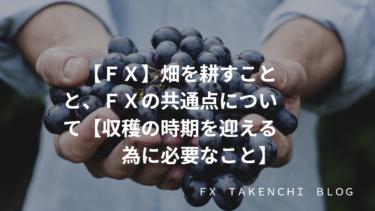 【FX】畑を耕すことと、FXの共通点について【収穫の時期を迎える為に必要なこと】